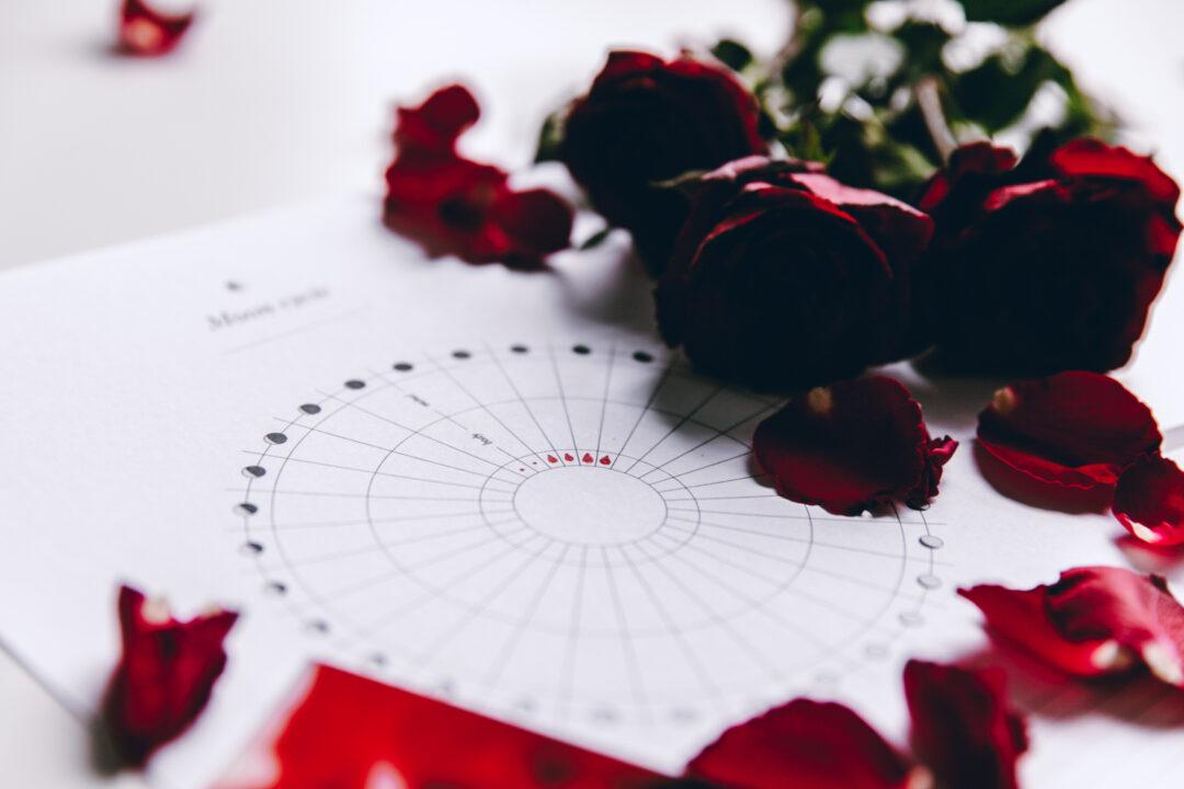 Moon Cycle kuukautistracker | tulostettava 9