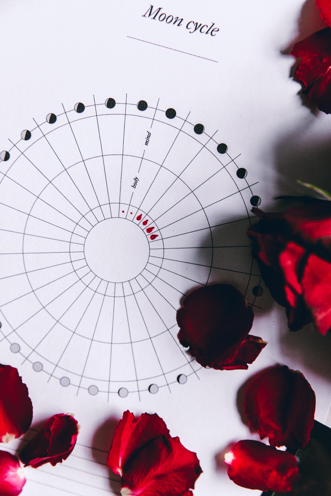 Moon Cycle kuukautistracker | tulostettava 2