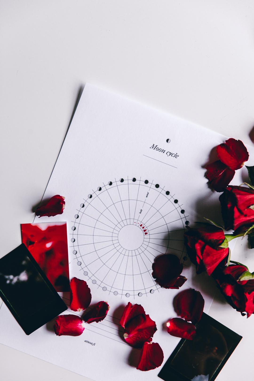 Moon Cycle kuukautistracker | tulostettava 3