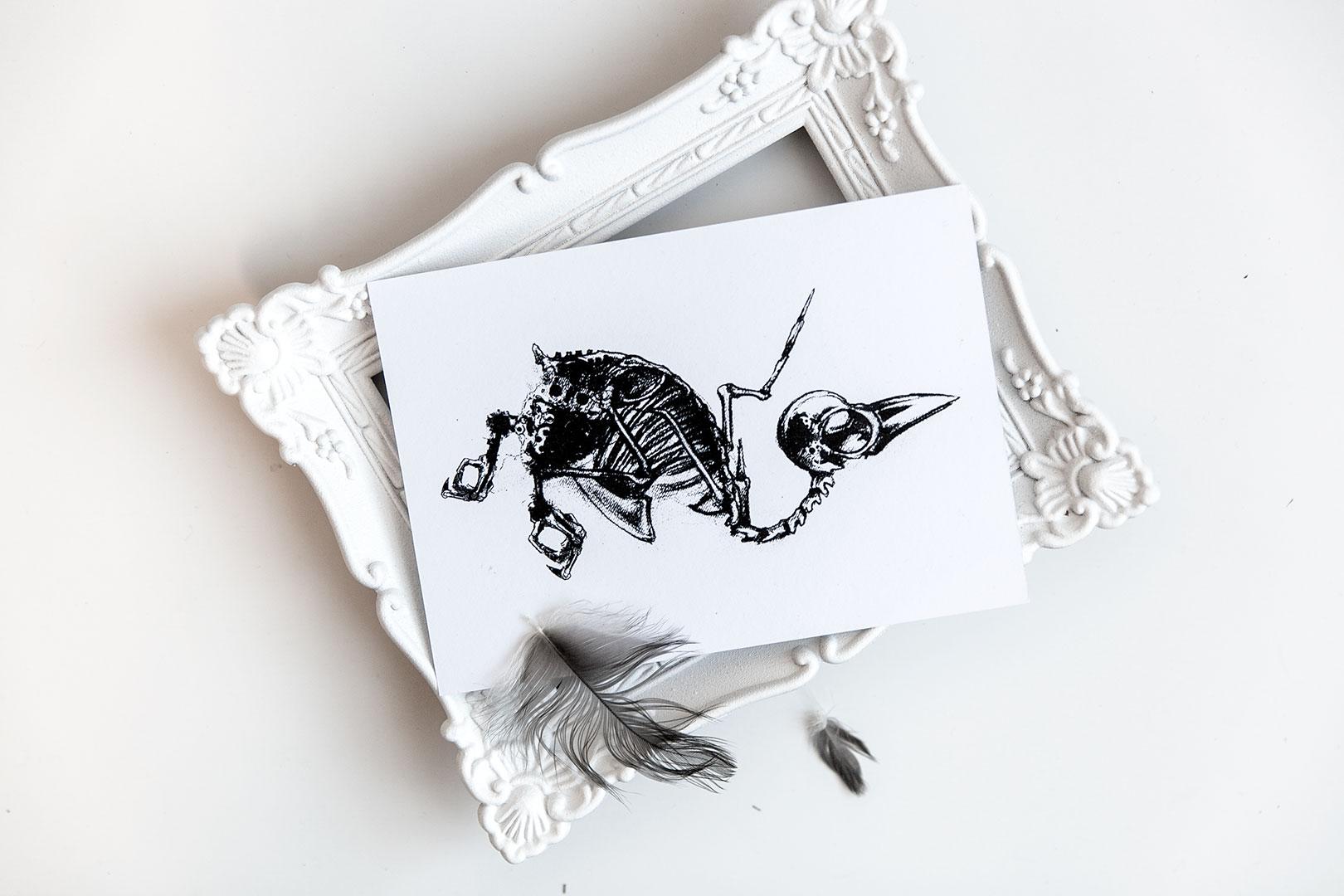 Postikortti | Pahanilmanlintu