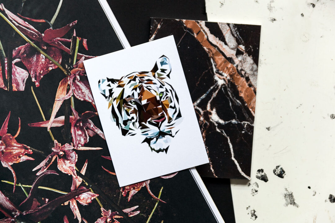 Postikortti | Tiger 1