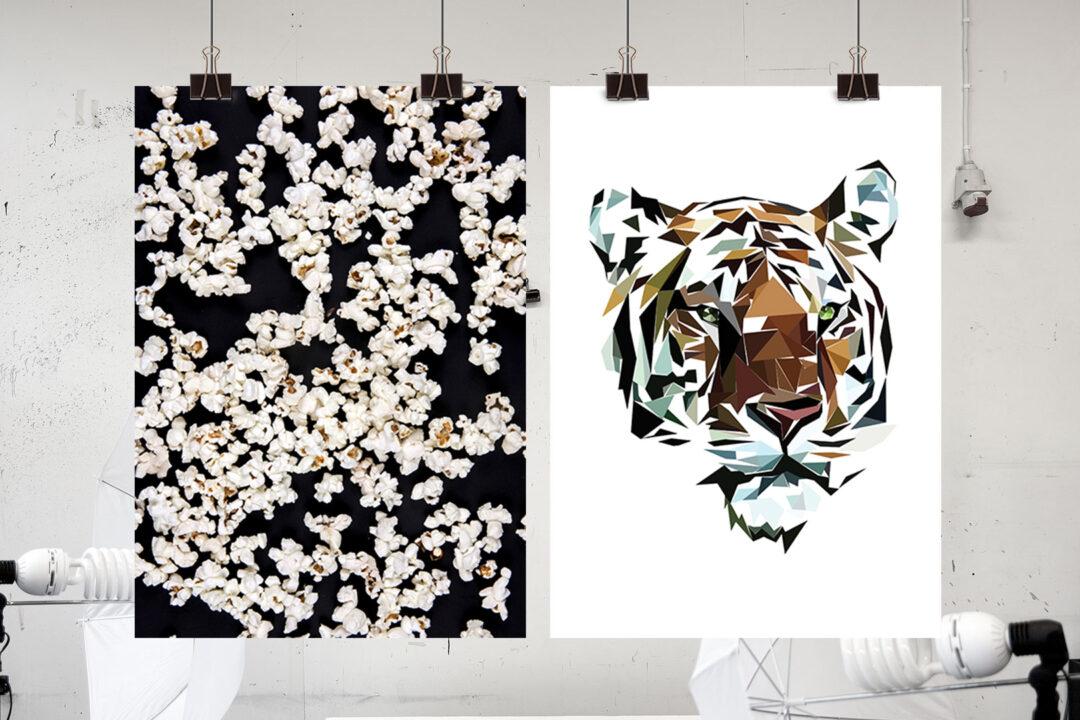 popcorn black, tiger