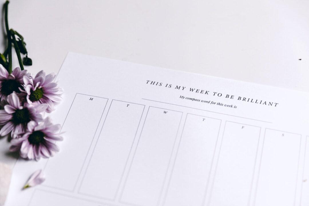 Viikkosuunnitelma | tulostettava 13