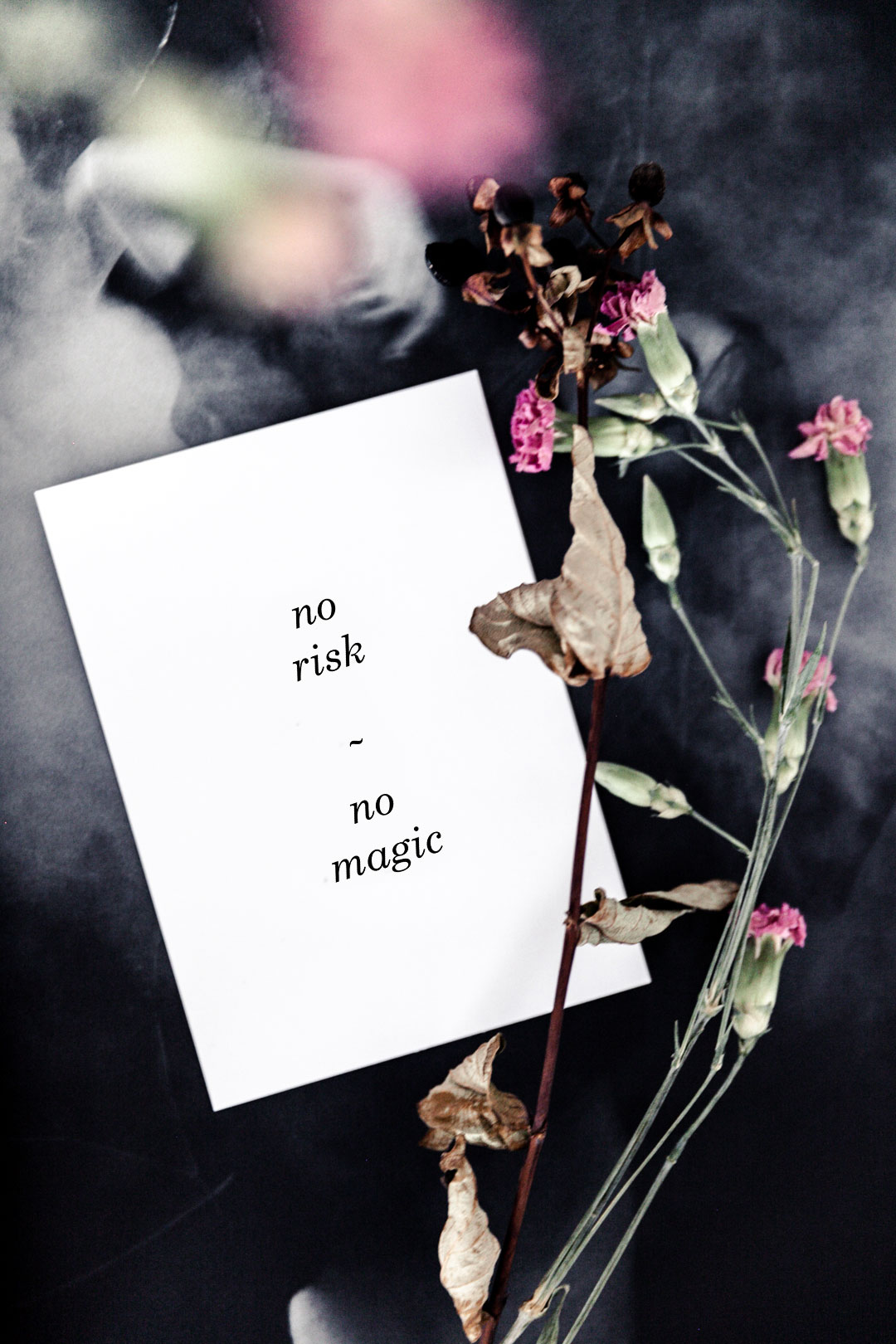Postikortti | no risk, no magic